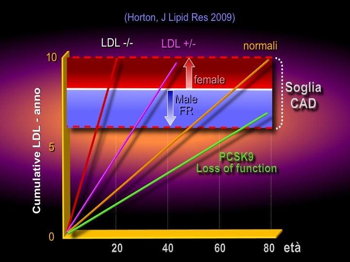 30. Il concetto è che l'azione aterogena del colesterolo è il prodotto del livello plasmatico del LDL moltiplicato per la durata dell'esposizione in anni, secondo una relazione lineare. La pendenza della retta aumenta nelle ipercolesterolemie familiari omozigote o eterozigote, in cui si raggiunge la soglia di malattia coronarica a 20 anni o a 40 anni, mentre in condizioni usuali la soglia è superata intorno ai 60 anni. La perdita di funzione della PCSK-9 abbassa la pendenza della retta per cui la soglia di coronaropatia non viene mai superata o solo dopo gli 80. In aggiunta il sesso femminile o maschile può spostare l'asticella della soglia di rischio più in alto o in basso.