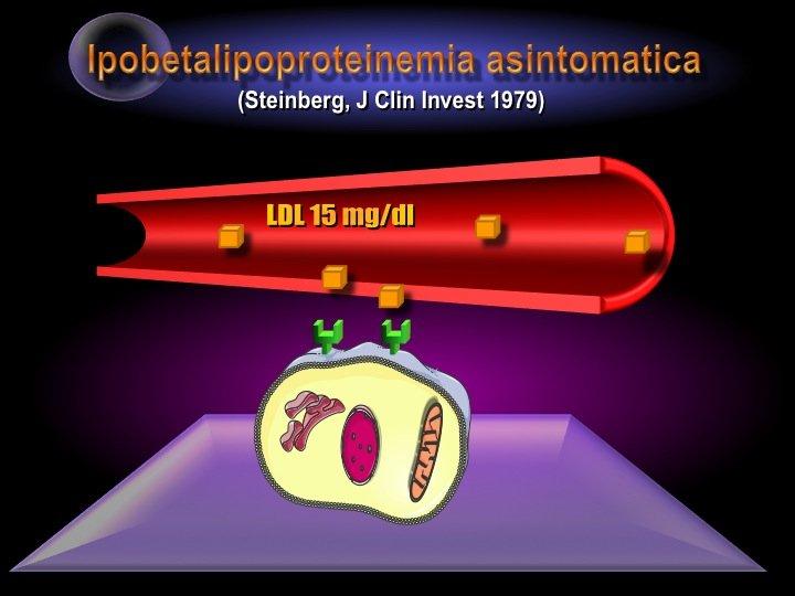 44. La diffusa sensazione che ridurre eccessivamente la colesterolemia possa essere rischioso è del tutto immotivata, se si considera che esistono patologie come la ipobetalipoproteinemia che sono del tutto asintomatiche, pur con livelli di LDL dell'ordine di 15 mg/dl. A questo si aggiunga che esistono rari casi in cui, con gli inibitori PCSK9, sono stati raggiunti valori di circa 10 mg/dl di LDL senza alcuna conseguenza negativa.